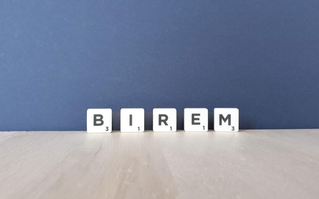 Das Projekt BIREM